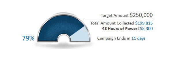 Semi-circular donation meter